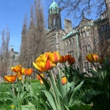 Trinity College, Université de Toronto